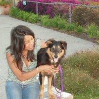 Lisa Manolius | Social Profile