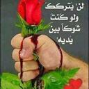 ابو محمديحيى (@01127727481Www) Twitter
