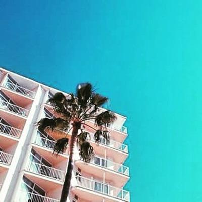 Hotel Amic Horizonte Social Profile