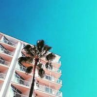 Hotel Amic Horizonte | Social Profile
