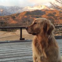 澤昭裕 | Social Profile