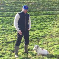 Matthew Hall | Social Profile