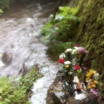 岩手17歳女性殺害事件   Social Profile