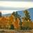 mountainsnews profile