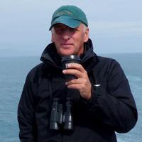 Alan Davies | Social Profile