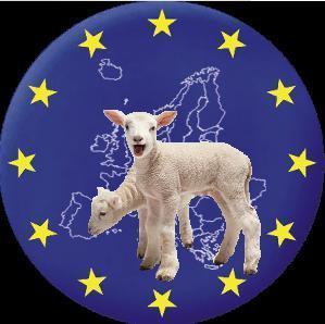 Ovce.eu