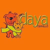 DayaCervello