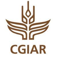 CGIAR Drylands | Social Profile