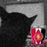 h_ueno | Social Profile