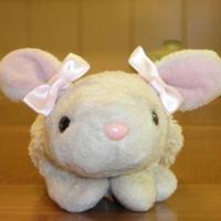 Pink Bunny | Social Profile