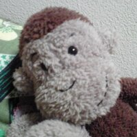 kyoko f | Social Profile
