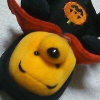 熊野オレンジ | Social Profile