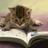 1ove_reading