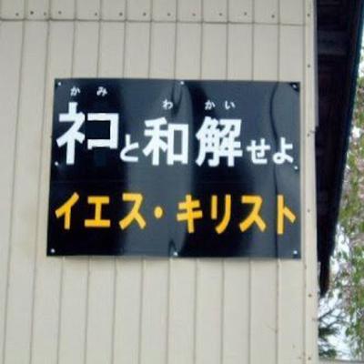 はぐれ高円寺純情派 | Social Profile