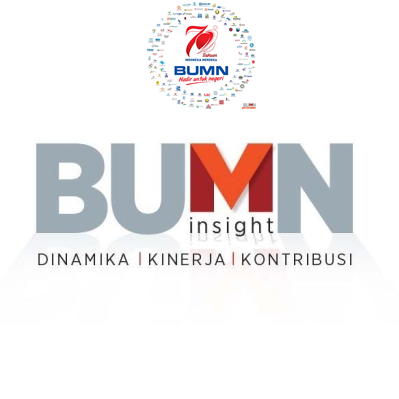 bumninsight.co.id