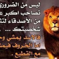 @mohamnad638