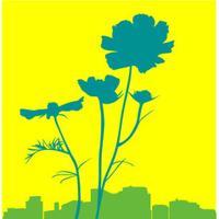 City Blossoms | Social Profile