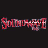 Soundwave Festival | Social Profile
