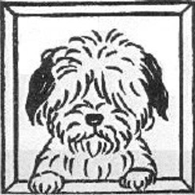 空犬(空犬太郎) | Social Profile