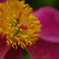 Mustard Seed Jobs | Social Profile
