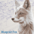 Blueprint Fox