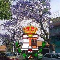 @ReyesIxtacala