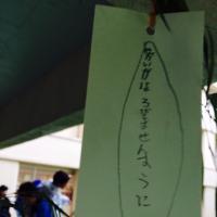 まなみぃ@   Social Profile