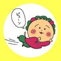 @yasuko_1201