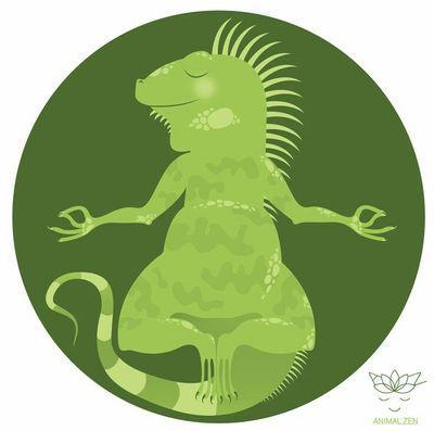iguanazen
