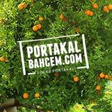 Portakalbahcem.com  Twitter Hesabı Profil Fotoğrafı