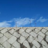 本座村 | Social Profile