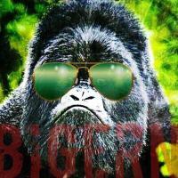brian mcgrattan | Social Profile