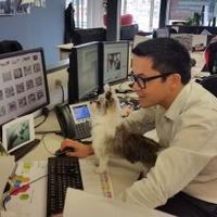 Simon Wong | Social Profile