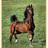 @horseblogs