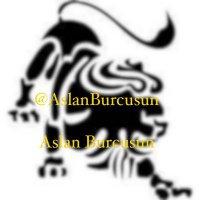 AslanBurcusun