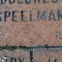 speelman558 | Social Profile