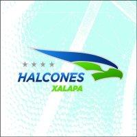 Halcones Xalapa | Social Profile