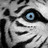 Tigressreow profile