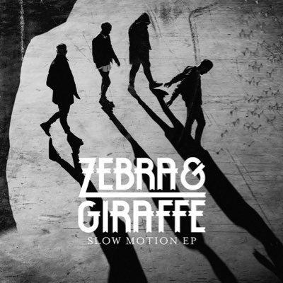 Zebra & Giraffe Social Profile