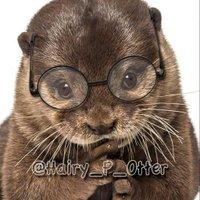Hairy_P_Otter