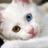 joana_joseph3