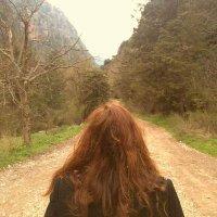 Heba Ghannam | Social Profile
