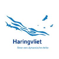 Haringvliet_nu