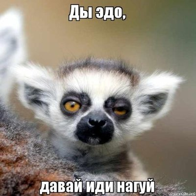 Алексей Гертман (@toden22)