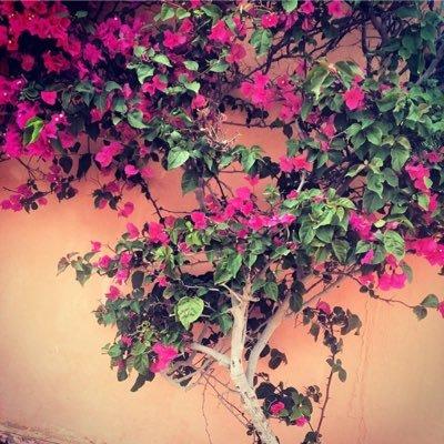 Zainab AlSarraf   Social Profile