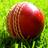 Cricket_TT1