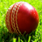 Cricket_Talk1