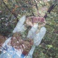 Y.Nakamura | Social Profile