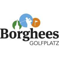 GolfBorghees