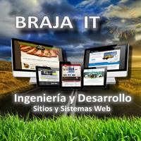 Braja IT | Social Profile